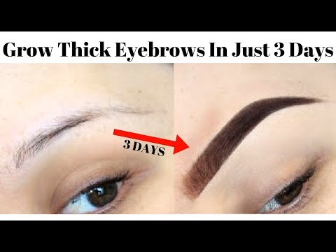 How To Grow Thick & Strong Eyebrows In Just 3 Days | NATURALLY + FAST (Guaranteed Results)