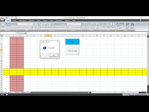 Show Hide Cell in Macro Excel VBA Project