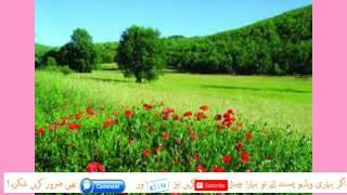 Sab se Bara Zalim Kaun by Molana Tariq Jameel Part-1