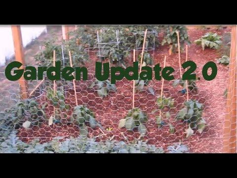 Garden Update 2.0
