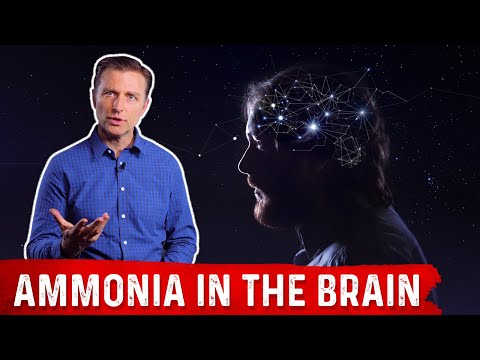 Ammonia in the Brain