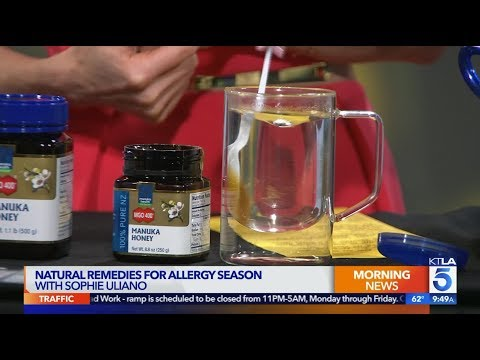 Suffer From Daily Allergies? Some Sure Fire Solutions Include Manuka Honey from Manuka Health
