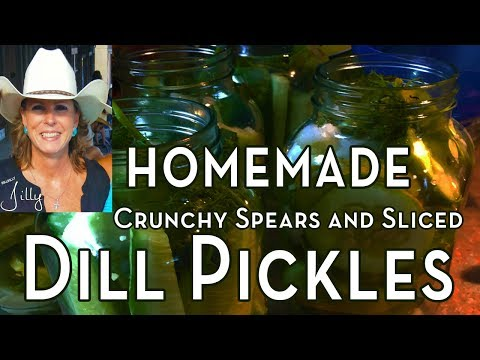 Canning Dill Pickle Spears ~ How to Make Dill Pickle Spears
