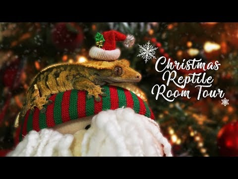 CHRISTMAS REPTILE ROOM TOUR!