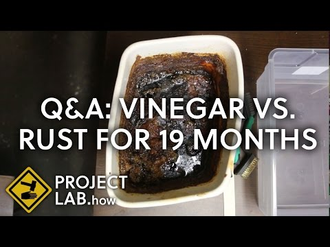 Followup, vinegar vs. rust for 19 months: I found a photo of the original tools (vlog)
