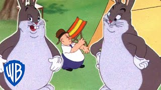 Download Looney Tunes   Elmer Fudd's Restful Retreat   Classic Cartoon   WB Kids Video