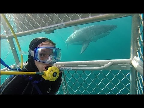 Surf and Travel - Backpack Australia, New Zealand, Fiji, Costa Rica GoPro