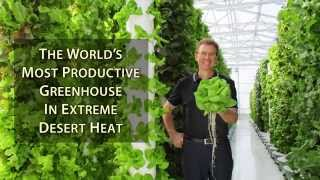 The World's Most Productive Greenhouse in Extreme Desert Heat