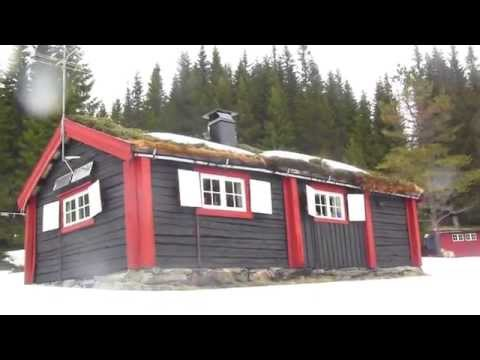 Vlog: My cottage