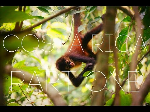 CORCOVADO NATIONAL PARK - COSTA RICA VLOGS: PART 1