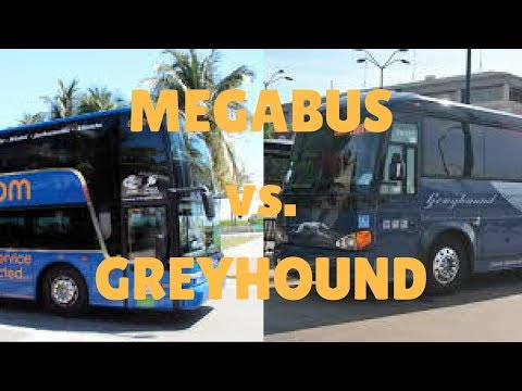 Megabus vs Greyhound | Which Bus Is Better?