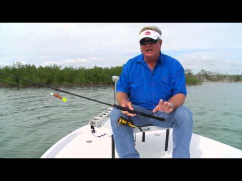 How to Find Bait Fish