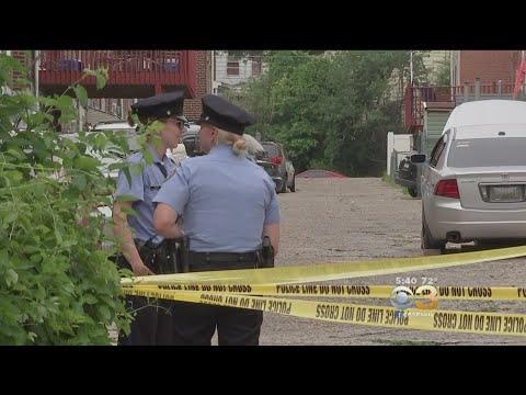 Police: Boy, 4, Attacked By Family Dog In Philadelphia