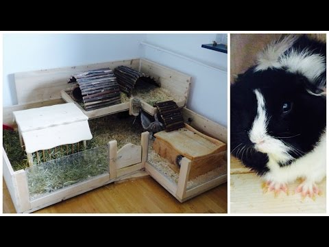 How To Build Your Own Wooden Guinea Pig Cage