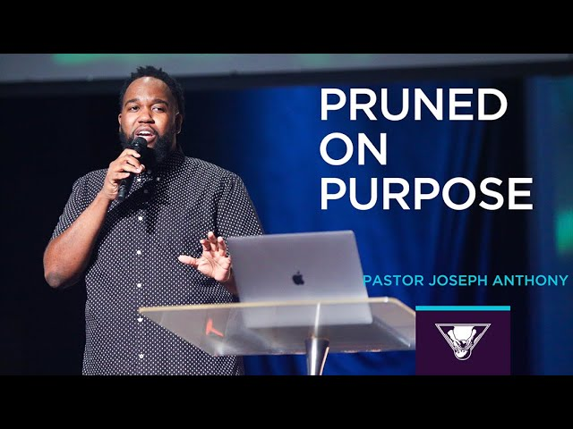 Download The Potter's House North - 05/30/2021   Pruned on Purpose   John 15: 1-3   Pastor Joseph Anthony MP3 Gratis