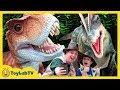 Giant Life Size T Rex Little Dinosaurs At Jurassic Quest Kids Dinosaur Event