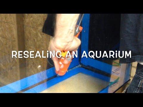 Resealing an Aquarium