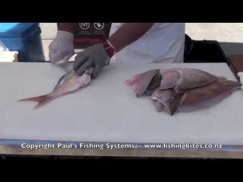 Cleaning Fish   Filleting, Boning and Skinning Average Sized Snapper and Bream