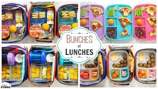 School Lunch Ideas for KIDS + What They Ate    BUNCHES of LUNCHES
