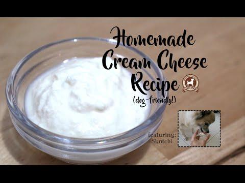 Homemade Cream Cheese Recipe (for dogs!)