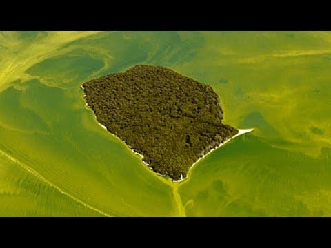 Something Strange Has Turned Lake Erie A Ghostlike Green