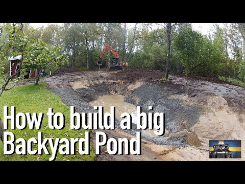 How to Build a Big Fish and Crawfish Pond in your Backyard