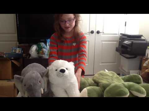 How to care for a stuffed animal with Kaydence