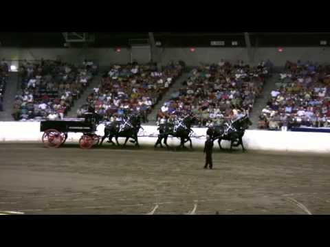 Governors Cup 6 Horse Hitch Competition - Ohio State Fair 2010