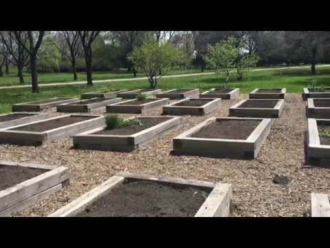 Building Raised Garden Beds for Vegetable Gardening - S7 Preview