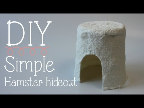 DIY simple Hamster hideout