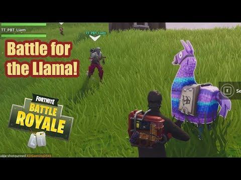BATTLE FOR THE LLAMA! Fortnite Battle Royale Season 4