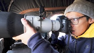 Canon 600mm F/4l Ii Hands-on   Nat Geo Wild!