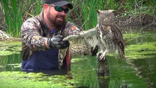 When A Man Went To Help An Owl Trapped In Fishing Line, The Raptor's Reaction Came Out Of The Blue