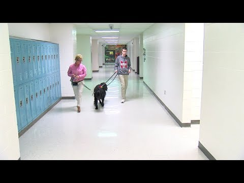 Milford High School class gets Autism Assistance Facility Dog