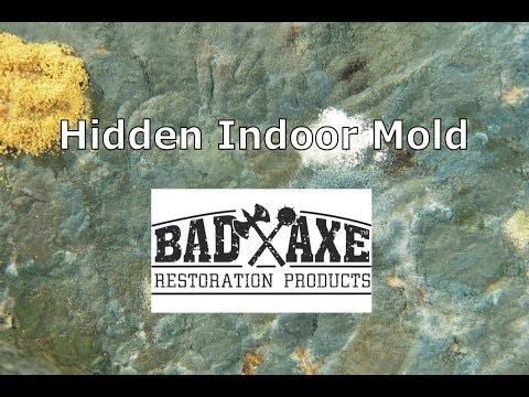 Hidden Indoor Mold by Bad Axe Restoration Products