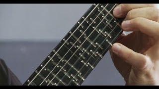 Microtonal Guitar (Fixed Fret) - Tolgahan Çoğulu