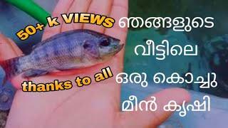 ഞങ്ങളുടെ വീട്ടിലെ മീൻ കൃഷി 🐟|| Fish Farming at home 🐟🐟😊