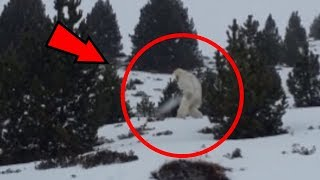 5 Moments That Prove Monsters Exist In Real Life!