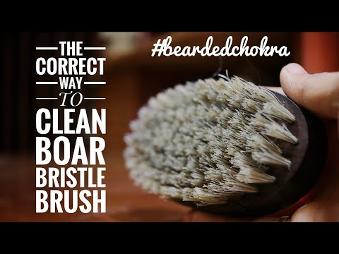 Clean Your Boar Bristle Brush The Correct Way