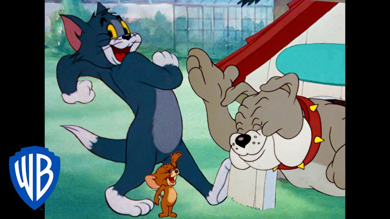 Tom y Jerry en Español | La noche divertida | WB Kids