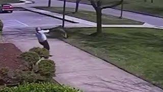 GOOSE Attacks COP Caught On Camera!!   What