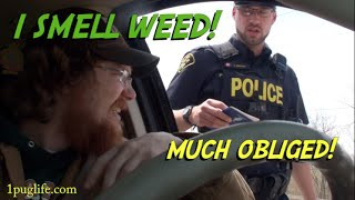 What To Do When The Cops Smell Weed