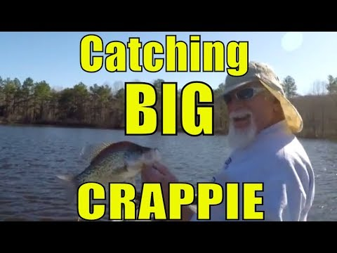 EPIC Crappie Fishing w/ Improved Crappie Rig!  Tons of ACTION!