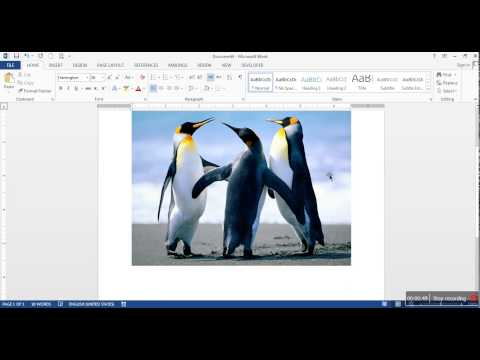 How to remove picture background in Word 2013