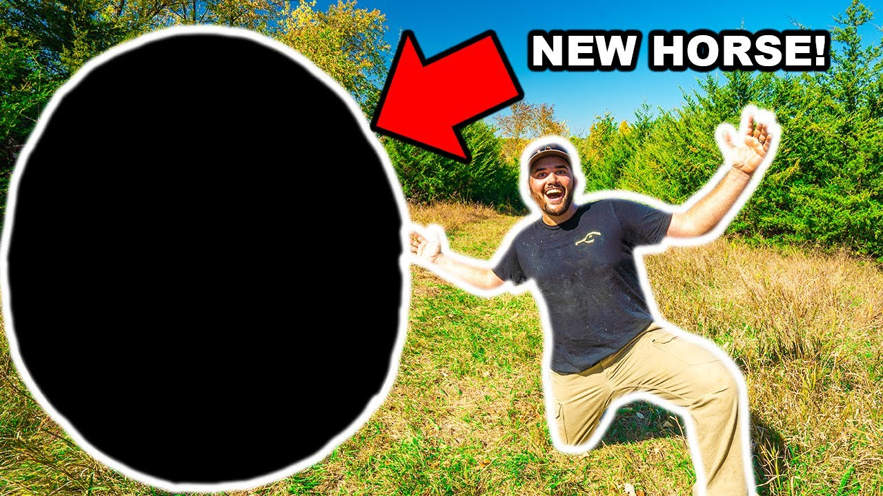 I Bought a HORSE for My BACKYARD FARM!!! (Can I Ride It?)