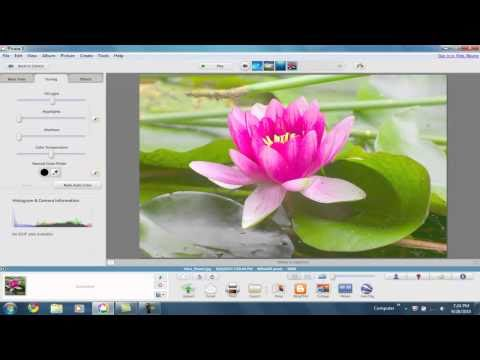 Picasa 3  Features.
