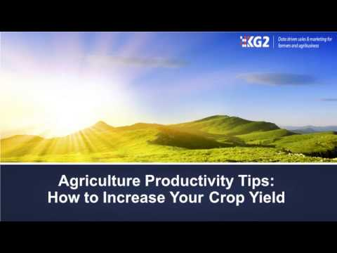 Agriculture Productivity Tips How to Increase Your Crop Yield