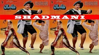 SHADMANI (1990) - SULTAN RAHI, ANJUMAN, MUSTAFA QURESHI & RANGEELA - FULL MOVIE