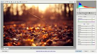 Camera Raw Filter Menu Installer | Use on Any Layer in