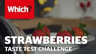 Tesco strawberries taste test - Premium vs standard challenge